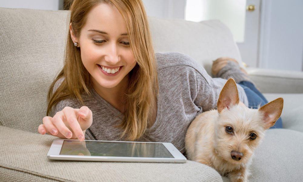 Chica y mascota usando Internet